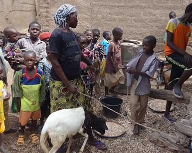 2015-10-Burkina-Ratyiri-goat_385